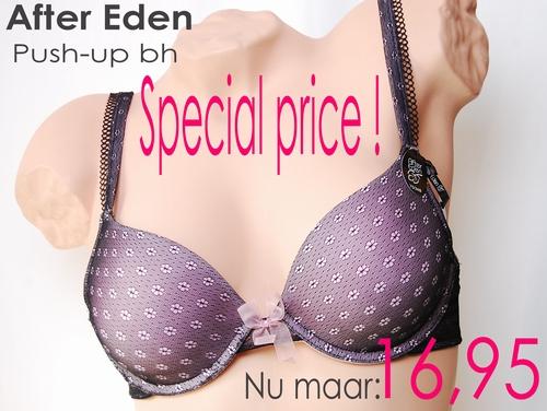T-shirt push-up bra After Eden.B,C,D-cup